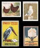 Owls, Poultry, Pigeons, Birds (338)
